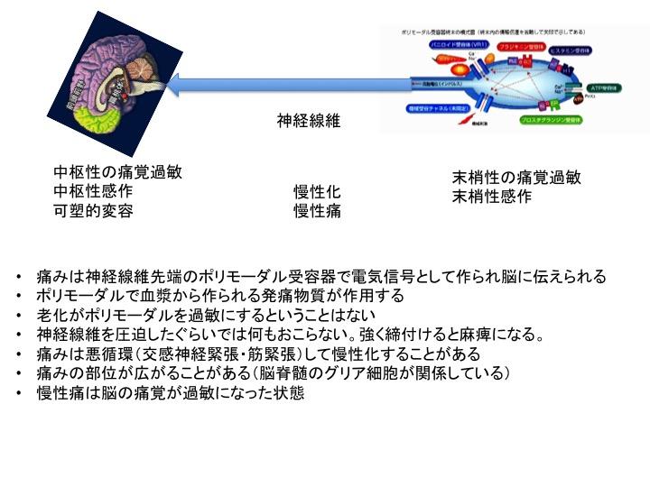 b0052170_0485675.jpg