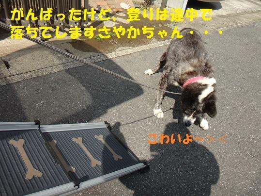 f0121712_01122029.jpg