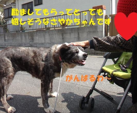 f0121712_01260212.jpg
