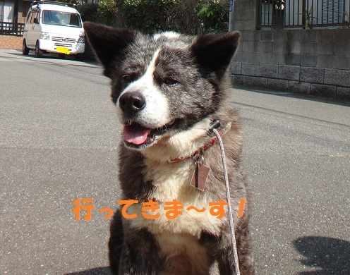 f0121712_01381449.jpg
