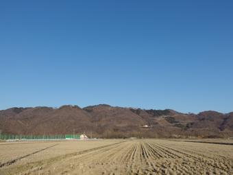 青い空_a0014840_2182952.jpg