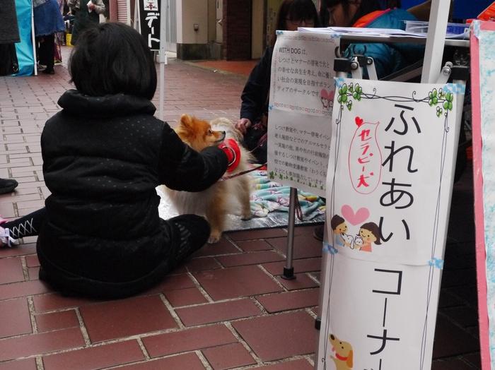 紀州海南ひなめぐり_b0093754_21233821.jpg