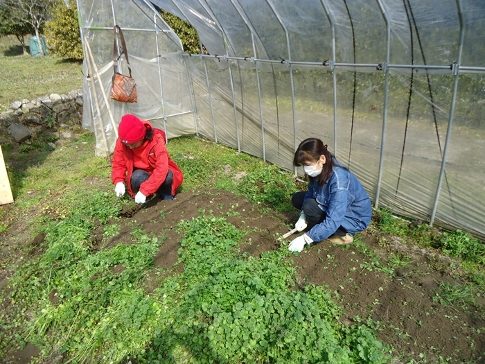 農作業はじめ・・_a0199979_15505272.jpg