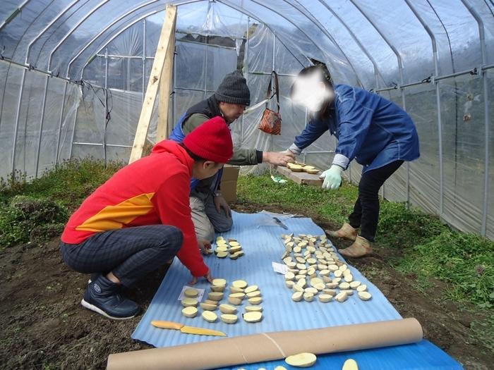 農作業はじめ・・_a0199979_15512238.jpg