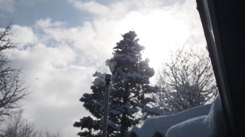 なごり雪かな?_b0343293_22392177.jpg