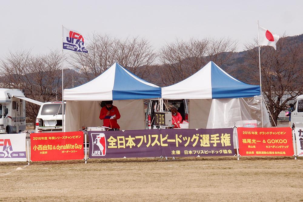 2017.3.12 全日本フリスビードッグ選手権 IN 栃木!<その1>_f0250322_16504873.jpg