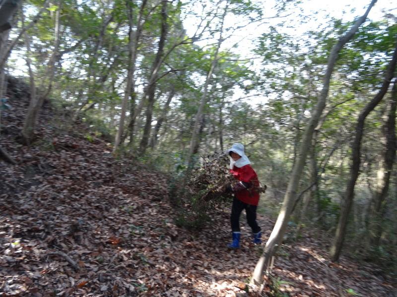 活き活きと伐採作業・・・うみべの森_c0108460_17515330.jpg