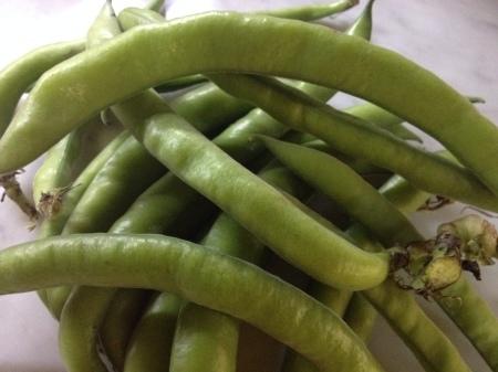 そら豆と小エビのオープンサンド_a0136671_22103333.jpg