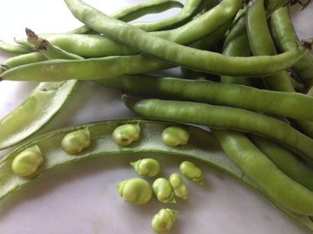 そら豆と小エビのオープンサンド_a0136671_22111251.jpg