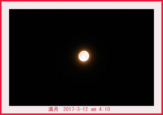 d0034980_18523639.jpg