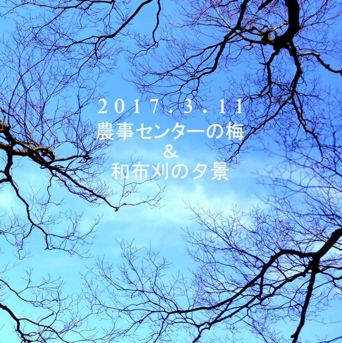 f0168981_22525665.jpg