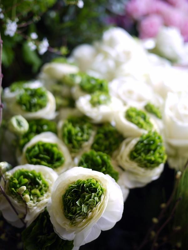 2017/03/08と3/10の店内の様子とお花。_b0171193_15365914.jpg