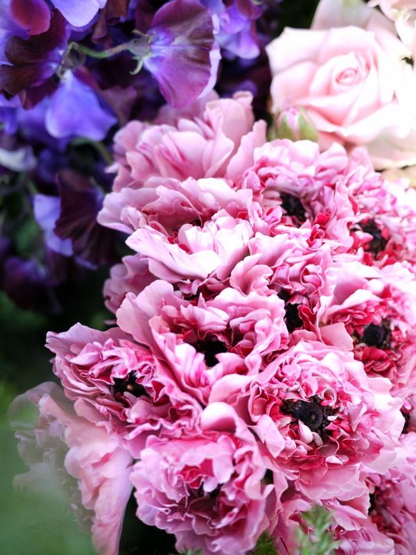 2017/03/08と3/10の店内の様子とお花。_b0171193_15370331.jpg