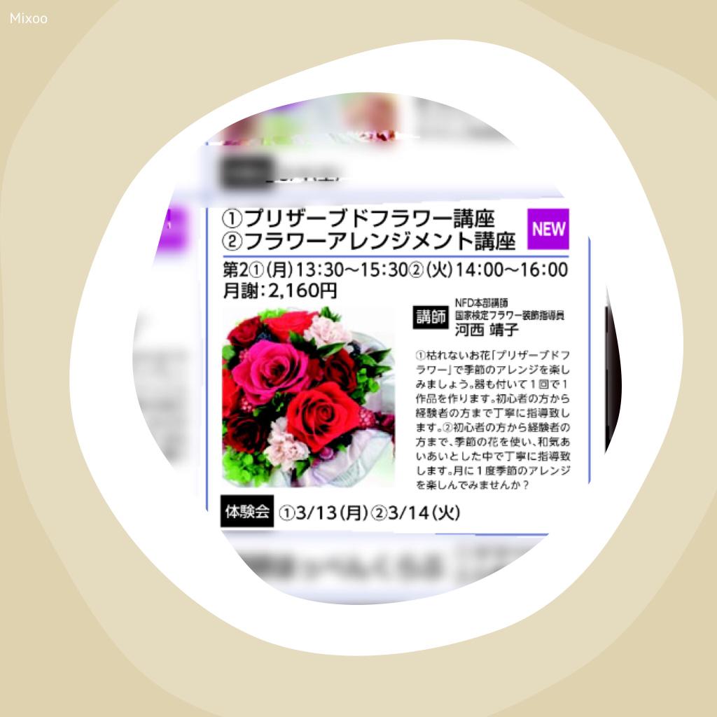 b0316499_13374073.jpg