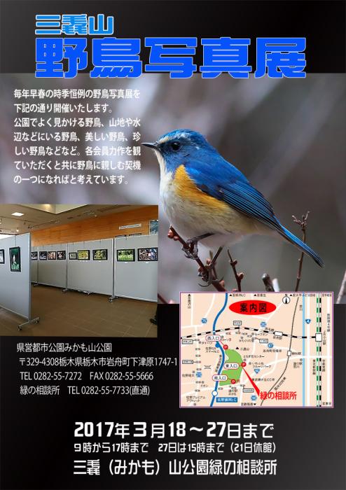 f0305401_16324635.jpg