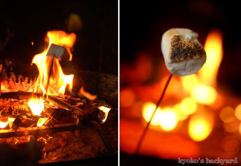 暖炉でスモアと、猫たちの反応_b0253205_07142333.jpg