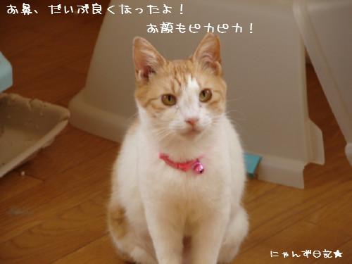 りりちゃん病院_d0355333_14090181.jpg