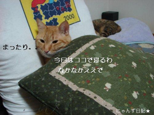 かわいいプレゼント★_d0355333_14094637.jpg