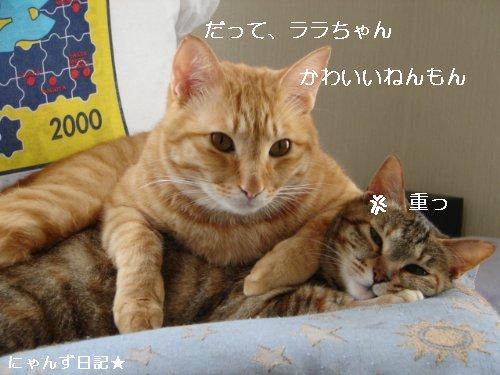 イケナイ行動_d0355333_14094764.jpg