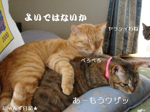 イケナイ行動_d0355333_14094767.jpg
