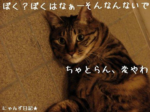 イケナイ行動_d0355333_14094770.jpg