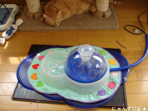 猫噴水の上手な使い方_d0355333_14105493.jpg