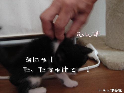 じゃんけんぽん★その2_d0355333_14111915.jpg