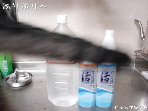 怪しい水★お値段考_d0355333_14123320.jpg
