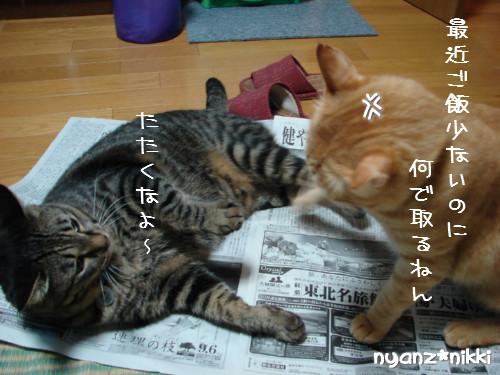 ご飯3粒の恨み_d0355333_14123692.jpeg