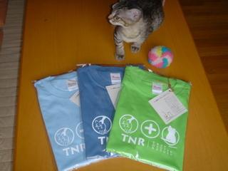 TNRシャツ、あと2枚 ^m^_d0355333_14131033.jpg