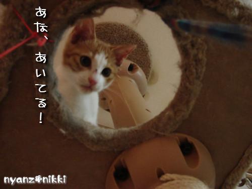 つくつく★タワー制覇_d0355333_14131814.jpeg