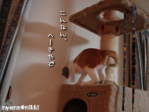 つくつく★タワー制覇_d0355333_14131853.jpeg