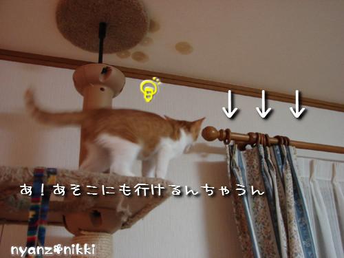 つくつく★タワー制覇_d0355333_14131892.jpeg