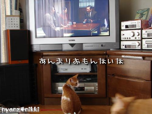 テレビみようよ!_d0355333_14135703.jpeg