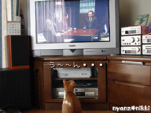 テレビみようよ!_d0355333_14135770.jpeg