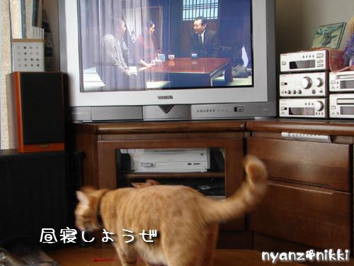 テレビみようよ!_d0355333_14135840.jpeg