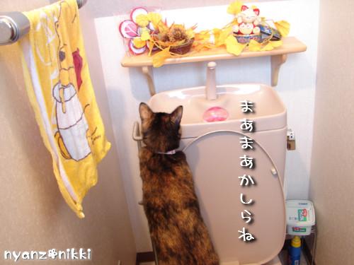 秋色おトイレ_d0355333_14142939.jpeg