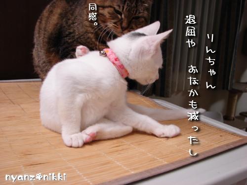 『オリテ』トレーニング実施ちう_d0355333_14151212.jpeg