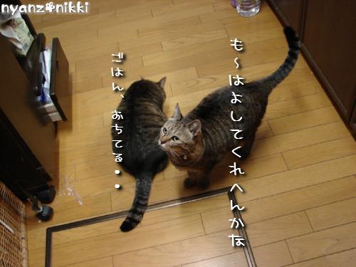 『オリテ』トレーニング実施ちう_d0355333_14151495.jpeg