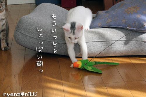 ゆうたママnicoさんがやってきた★_d0355333_14154441.jpg