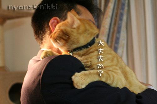 いやしい猫じゃなくて、癒し猫。_d0355333_14561222.jpg