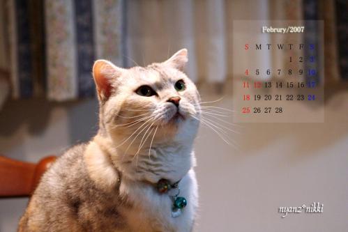 2月のカレンダー_d0355333_14563776.jpg