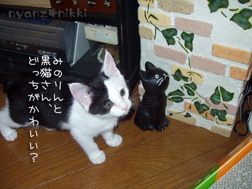 みのりちゃんの近況♪_d0355333_15025425.jpg