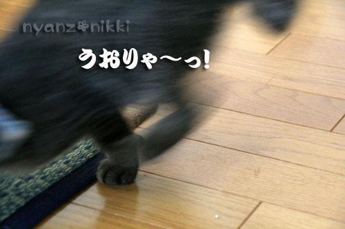 忍者デビュー☆_d0355333_15043184.jpg