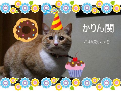 猫とお線香の関係&幸せ報告_d0355333_16364475.jpg