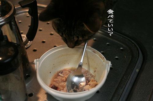 にゃんずご飯と男の料理_d0355333_16364845.jpg