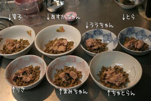 にゃんずご飯と男の料理_d0355333_16364935.jpg