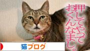 芸猫人生を突き進む_d0355333_16365970.jpg