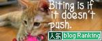 大阪国際女子マラソン見ながら、飛ぶ猫チャレンジ_d0355333_16370362.jpg