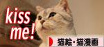 活発子猫とおっとりスコ猫_d0355333_16371701.jpg